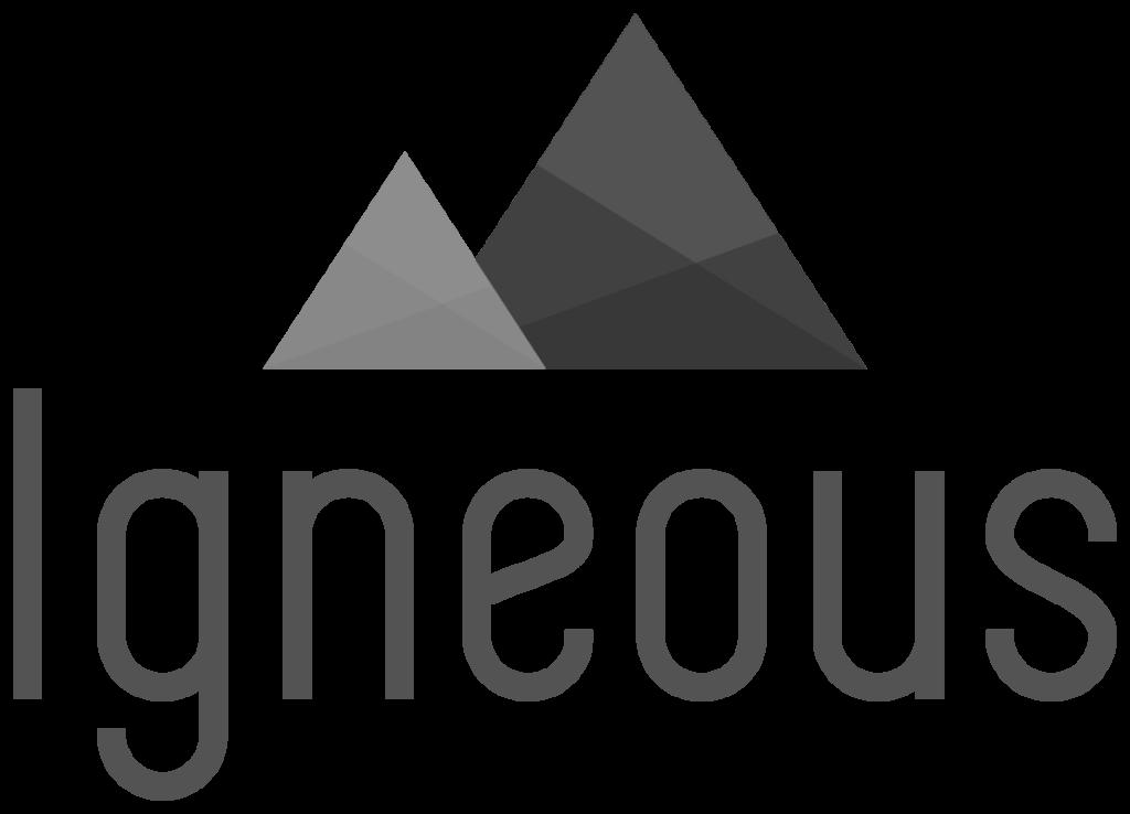 Igneous solution provider Chicago Atlanta Grand Rapids Orlando gray logo